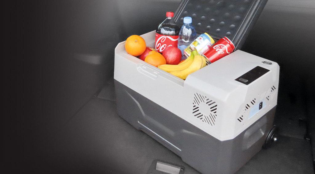 Logica: Frigorifero e congelatore portatile